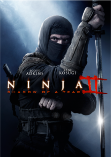 Ninja 2 Shadow of a Tear poster